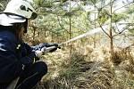 Mezi Cholticemi a Lipolticemi hořel les. Byl to již třetí požár v této oblasti za dva dny.
