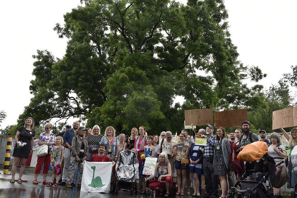 U 160 let vzrostlého jasanu v Pardubicích se  sešly desítky lidí. Přišly, aby vyjádřily nesouhlas s tím, že má strom, který získal titul Strom hrdina, padnout kvůli výstavbě obchodů.