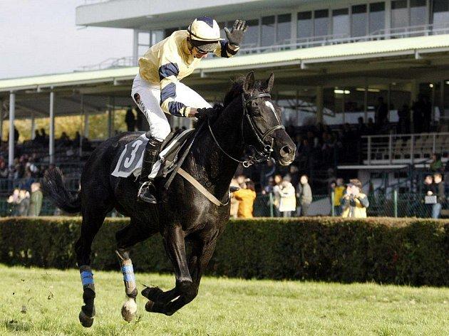 Poslední dostih sezony na závodišti v Pardubicích suverénně vyhrál favorizovaný Baggio s žokejem Jaroslavem Myškou.