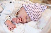 ALBERT VONDROVIC se narodil 4. října ve 22 hodin a 45 minut. Měřil 49 centimetrů a vážil 2980 gramů. Maminku Jaroslavu u porodu podpořil tatínek Vojtěch. Rodina žije v Pardubicích.