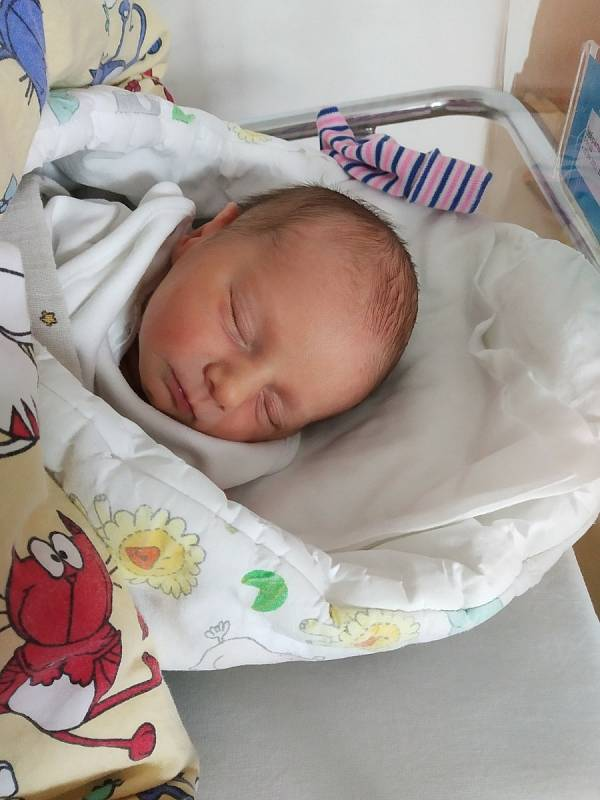 Tomáš Štěpánek se narodil 22. 9. v 19:22 hodin. Po narození vážil 2740 g. Šťastná je maminka Lucie i tatínek Josef. Doma v Nových Hradech se na Tomáška těší tři bráškové - Matoušek (8), Toník (5) a Mikulášek (3). Foto: rodina