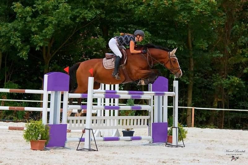 Když přišel celkový kolaps jednoho z koní, vymyslela projekt Bylinky pro koně.