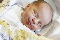 František Novák se narodil 23. prosince ve 4:27 hodin. Měřil 49 centimetrů a vážil 3260 gramů. Maminka Hana je z Pardubic.