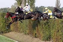 Na pardubickém závodišti bude o víkendu výstava chladnokrevných koní. U Taxisu pak dvě svatby.