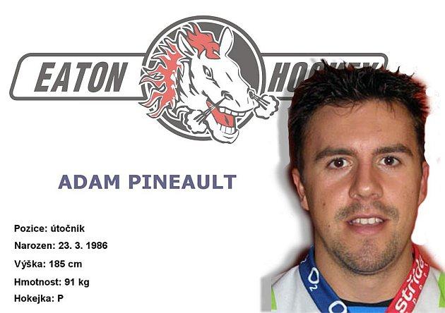 Profil Adama Pineaulta