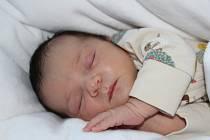 Jolana Řehořová se narodila 8. ledna 2021 v 7:26 hodin. Vážila 4140 gramů a měřila 52 cm. Velkou radost udělala rodičům Michale a Radkovi z Horky u Chrudimi. Doma se na sestřičku těšili sourozenci Alice (6,5 roku) a Matěj (4 roky).