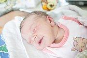 Stella Pospíšilová přišla na svět 31. října v 17:38 hodin. Měřila 49 centimetrů a vážila 3350 gramů. Maminku Ladu u porodu podpořil tatínek Jaroslav a rodina je z Hradce Králové.