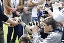 """Jak pořídit dobrou fotku? Ideální příležitost nabídla prezentace záchranné stanice Žleby, která přivezla některá zachráněná zvířata. Právě z nich se rázem staly """"modely""""."""