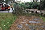 Následky vichřice, se kterou se potýkali dobrovolní hasiči kolem Lázní Bohdaneč.