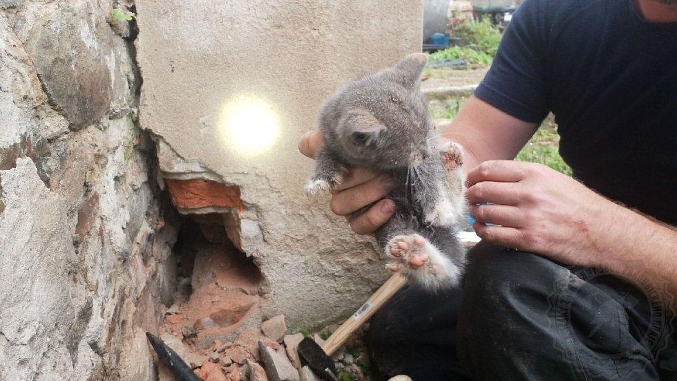 Hasiči zachránili kotě z úzké škvíry