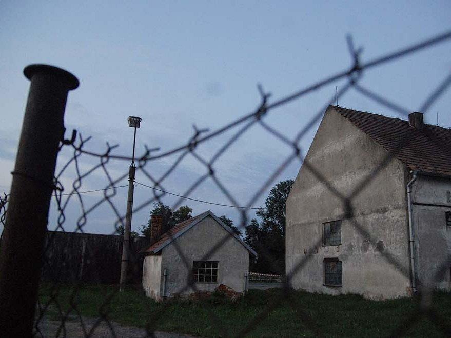 V obci Tisová na Orlickoústecku byl potvrzen v chovu krůt virus ptačí chřipky.