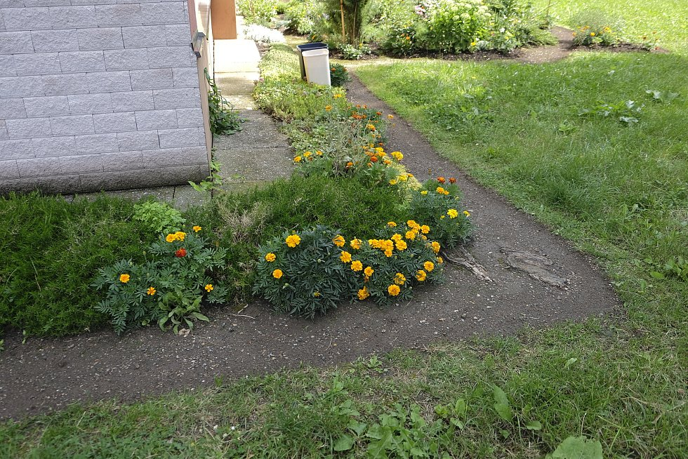 Vášnivá zahradnice Hana Malá chce ukázat, že zahradničit mohou i lidé z paneláku v centru Pardubic.