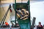 Tradiční výlov v Národní přírodní rezervaci Bohdanečský rybník a rybník Matka. Na hrázi mohli příchozí ochutnat rybí speciality z grilu a udírny.
