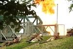 Bailey bridge 2012 v Hradci Králové se letos nesl v duchu bitev o Francii v roce 1940 a 1944.