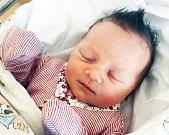 SOFIE ELLA ZÁMEČNÍKOVÁ se narodila 6. dubna v 17 hodin a 32 minut. Měřila  52 centimetrů a vážila 3690 gramů. Maminku Elišku podpořil u porodu tatínek Luboš. Doma v Pardubicích se na nového sourozence těší pětiletý Maxmilian.