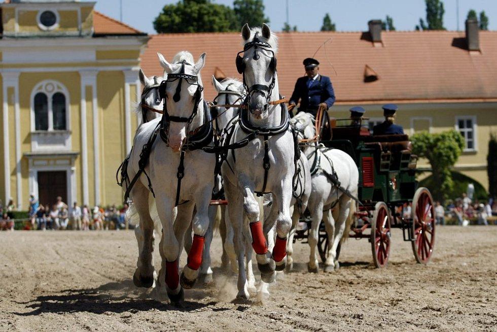 Kladrubský hřebčín oslavil 430 let své existence