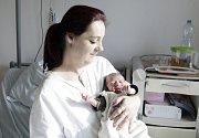 ERIK STŘÍBRNÝ se narodil  1. února v 8 hodin a 23 minut. Vážil 3110 gramů a měřil 48 centimetrů. Malého Erika a maminku Martinu očekává doma v Medlešicích tatínek Lukáš. Erikovi sourozenci jsou už odrostlí.