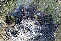 Špatně uhašený táborák u Javorníku byl největším ohněm, který hasiči v Pardubickém kraji museli krotit.