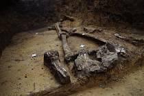 Část kostry, pochva a meč v levé části