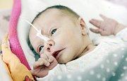 TEREZA DRDŮLOVÁ se narodila 28. dubna v 10 hodin a 45 minut. Měřila 45 centimetrů a vážila 2100 gramů. Maminku Kateřinu u porodu podpořil tatínek David. Bydlí v Rozstání.