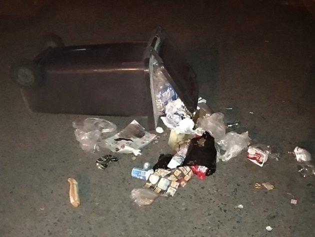 Rozkopnutá popelnice vynesla ženě pobyt na záchytné stanici.