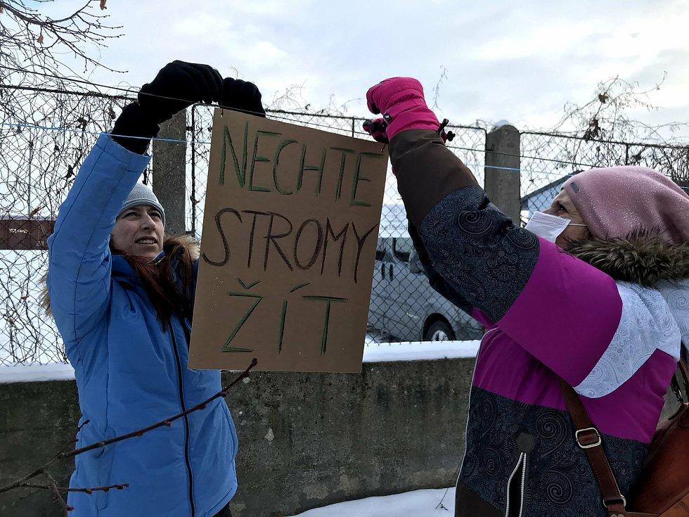 Aktivisté se snaží zachránit lipovou alej. Na stromy, které mají jít k zemi, vyvěsili v sobotu transparenty.