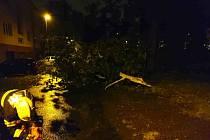 Noční bouřka strhla střechu paneláku a lámala stromy