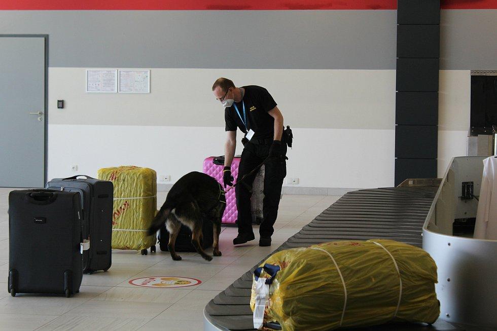 Psovod Celní správy se psem kontrolovali, zda cestujíci na letišti v Pardubicích nepřeváží nenahlášenou hotovost a cennosti nad limit daný novou regulí EU.