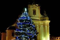 Na třetí příčce se umístil strom v Heřmanově Městci
