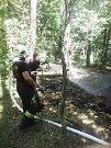 Požár lesa mezi Lázněmi Bohdaneč a Stéblovou se podařilo hasičům zastavit včas.