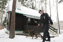 Policisté na Holicku kontrolují chatové oblasti