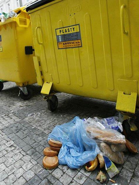 Rozkopávání popelnic je bohužel čím dál častější.