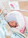Anna Hanušová se narodila 23. 10. v 9:01 hodin s váhou 3540 kilogramů. Pro rodiče Soňu a Láďu je to první potomek. Rodina bydlí v Řečanech nad Labem.