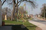 Vlastnoruční výrobek - strom Skořápník