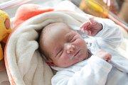 TOMÁŠ HUDEC se narodil 5. února v 9 hodin a 50 minut. Vážil 3550 gramů a měřil 51 centimetrů. Maminku Hanu podpořil u porodu tatínek Tomáš. Doma čeká na malého Tomáška dvaadvacetiletý Roman, dvacetiletá Kateřina, šestnáctiletý Dominik a dvanáctiletý Frant