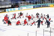 Česká hokejová reprezentace na tréninku v Helsinkách