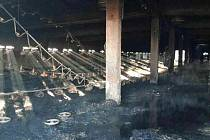 Noční požár pohltil halu připravenou pro chov drůbeže v Moravanech.
