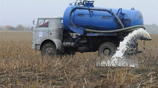 TO JE TA ZEMĚ, mlékem a strdím oplývající. Co se týče mléka, zemědělci vzali repliku praotce Čecha včera vážně. Snímek je z Bohuslavic na Rychnovsku.