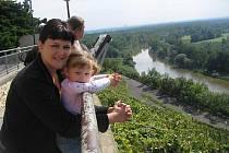 Nataša HALE, 37 let,  na mateřské dovolené