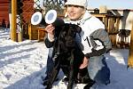 Částečné zatmění Slunce si v pardubické hvězdárně nenechal ujít ani pes.