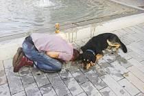 Opilého muže hlídal jeho pes