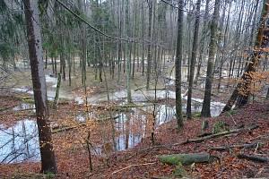Revitalizace Zádolského potoku pomohla krajině