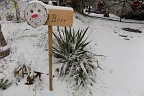 Pošlete nám snímky zasněžené krajiny, stejně jako to udělala paní Milada Tomanová z Morašic u Přelouče.