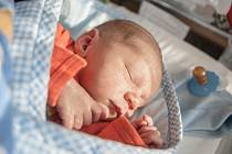 Viktor Bartoš se narodil 10. listopadu v 18:59 hodin. Měřil 50 centimetrů a vážil 3210 gramů. Maminku Veroniku u porodu podporoval tatínek Pavel a rodina je z Dražkovic.