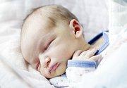 MIKULÁŠ MÁRA se narodil  21. března v 19 hodin a 16 minut. Vážil 3160 gramů a měřil 49 centimetrů. Maminku Elišku podpořil při porodu tatínek Marcel. Bydlí v Srchu.