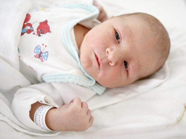František Michael Darius se narodil 7. srpna ve 23:53 hodin. Měřil 51 centimetrů a vážil 3450 gramů. Maminku Michaelu u porodu podpořil tatínek František, rodina bydlí v Pardubicích.