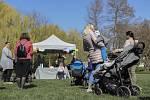 V Tyršových sadech v Pardubicích se konala petiční akce, jejímž cílem bylo upozornit na problematické návrhy týkající se zvýšení rodičovského příspěvku.