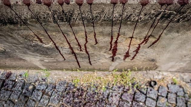 """Cákance """"krve"""" se v Pardubicích objevily zase. Tentokrát se cílem útoku stal kostel Zvěstování Panny Marie."""