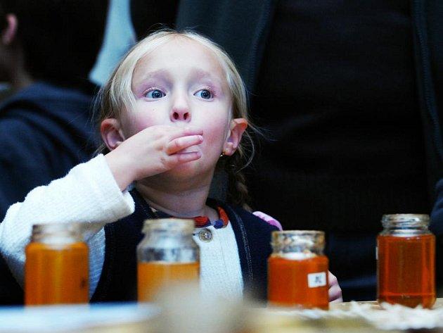 Pardubičtí včelaři slavili sté výročí - Dny medu
