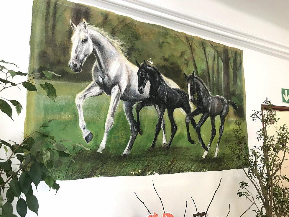 Koně lze ale v obci vidět na každém kroku. Například mateřská škola se jmenuje Hříbata.